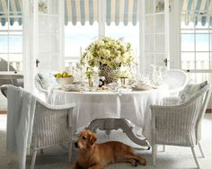 Perfection every time   RALPH LAUREN-ROSECLIFF new line