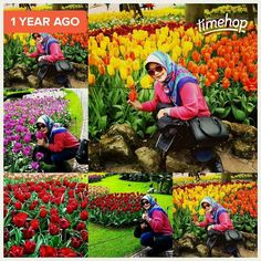 A year ago today! How time flies...but still wanna go there again though...  #me #throwback #tbt #ayearago #tulip #beautiful #flower #keukenhof #garden #lisse #amsterdam #holland #thenetherland #nederland #spring #2015 #europe #vacation #getaway #wanderlust #worlderlust #traveller #travelling #instatravel #igtravel #travelphoto #traveltheworld by eva_fauziyah