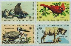 I uploaded new artwork to fineartamerica.com! - 'The Wildlife Conservation Stamps' - http://fineartamerica.com/featured/the-wildlife-conservation-stamps-lanjee-chee.html via @fineartamerica