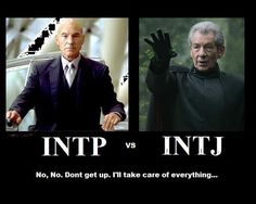 INTP's are good idea generators and INTJ's good executors. (Where does this leave me since the difference between J and P was 1%?)