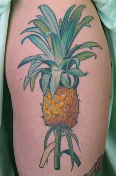 botanical illustration pineapple tattoo by Amy Duncan (Melbourne), from the Taschen book Garden of Eden