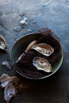 nadine greef oyster, food photographer
