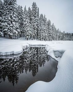 Snow at Todd Lake along the Cascade Lakes Scenic Highway in Bend, Oregon --------- @extreme_oregon