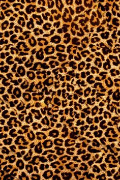 Image in wallpaper collection by HLJL on We Heart It Leopard Print Wallpaper, Purple Wallpaper, Purple Backgrounds, Colorful Wallpaper, Wallpaper Backgrounds, Leopard Prints, Luxury Wallpaper, Iphone Backgrounds, Mobile Wallpaper