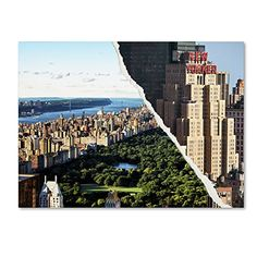 "Trademark Fine Art Central Park View by Philippe Hugonnard Wall Decor, 18 by 24"" Trademark Fine Art http://www.amazon.com/dp/B0144MXNEE/ref=cm_sw_r_pi_dp_8fN-vb0S08R0H"