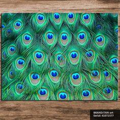 Tavuskuşu-tüyleri-natürmort-Soyut-yağlıboya-Çizim-sanat-Sprey-Çerçevesiz-Tuval-balmumu-eylem-resim-minyat&uuml (800×800)