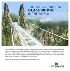 The Longest, Highest Glass Bridge in the world.
