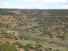 Quiet Northern Az Wilderness Ranch, Land for Sale by St. Johns in Apache County, Arizona - LANDFLIP.com