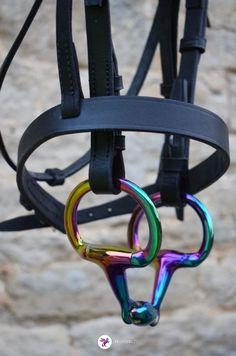 www.pegasebuzz.com | Equestrian Fashion : rainbow gloss horsebit by EvoEquine.