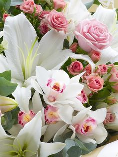 Orchid Rose and Lily All Flowers, My Flower, Fresh Flowers, Colorful Flowers, Flower Power, Beautiful Flowers, Wedding Flowers, Flowers Garden, Beautiful Flower Arrangements