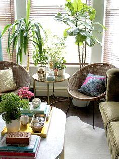@dreamgreendiy shares five reasons you should add houseplants to your home.