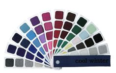 Cool Winter Color Swatch Book