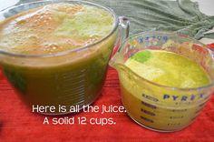 Healthy Green Drink (bulk) Recipe - The Tasty Alternative