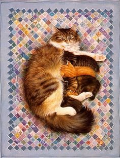 Картины Lesley Anne Ivory с кошками. :: Кошачий портал. Фото кошек, картинки с кошками