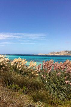 Sea and Nature  Sardinia