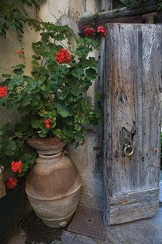 Garden Door, Amalfi coast, Italy by Nick Zungoli