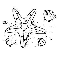 Starfish Coloring Page I Used This The Day We Learned About My Daughter Colored And Then In Corner Drew Her Own