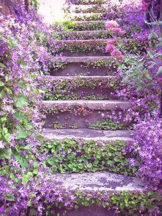 flower covered stairway
