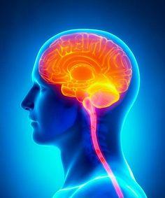 Acupuncture Alleviates Dementia and Cognitive Impairment