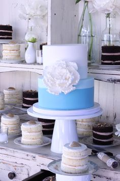 Ombre Blue Wedding Cake | Mini Naked Cakes | Hutch Display | Hands on Sweets Tampa, FL
