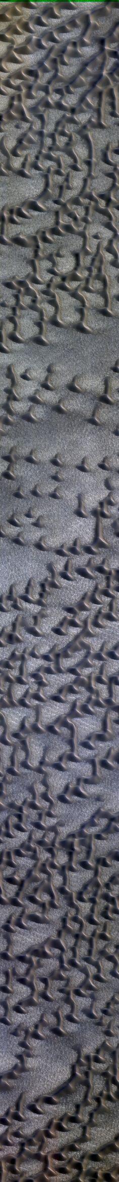 NASA/JPL/University of Arizona Furrows on Dunes HIRISE Mars