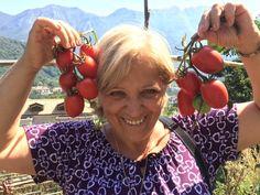 Re Fiascone, un #pomodoro che cresce sano e controllato (#contadini #contadinicustodi #costieraamalfitana #biodiversità)