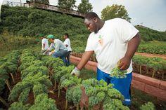 Alabama Boasts Small Farms in Big Cities