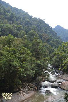 Disfruta de la magia de nuestros antepasados teyunas #Lostcitytrek #Nature #Travellers #Adventures #Welovetravel #Cultures