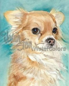 Long Haired Chihuahua Chi Dog Art Print Watercolor Painting Judith Stein SOPHIE #Realism