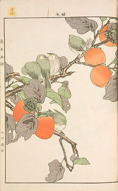 Imao Keinen (1845-1924), Keinen kachō gafu, vol. 3, autumn, Japanese white-eye and persimmons
