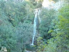 Тбилиси, ботанический сад  Tbilisi, Botanical Garden