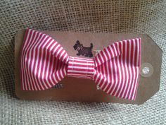 Red and White Pinstripe bow tie fits both cats and by GymboHannah, $12.00
