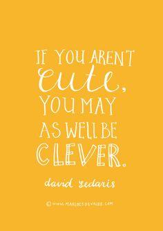 David Sedaris quote (illustrated by Marloes de Vries)