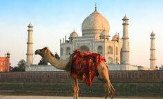 The reputation of the Taj Mahal makes me want to see it myself.