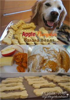 Apple Pumpkin Banana Bones #dogtreats #dogfood #dog http://www.petrashop.com/