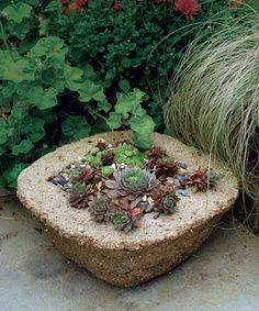 Make Your Own Hypertufa Container  Hypertufa looks like stone but weighs less and takes whatever shape you want.  Tutorial here www.finegardening...    by Michelle Gervais                                                                                                                                                                                 Mais