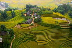 Rice terraces – Sapa, #Vietnam, photo by Jimmy Tran / Shutterstock - Where to go in Vietnam http://travel.prwave.ro/places-in-vietnam/ #travel