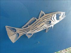 Striped bass metal gamefish sculpture art.. Hand drawn and plasma cut aluminum sculpture... Www.metalgamefish.com