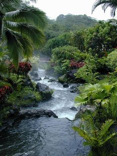 Tabacon Hot Springs: natural thermal river heated by nearby Arenal Volcano. La Fortuna, Costa Rica