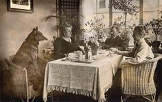 Four people at tea by Libby Hall Dog Photo, via Flickr