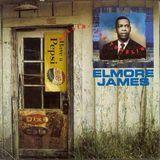 Rollin' & Tumblin': The Best of Elmore James [Recall] [CD]