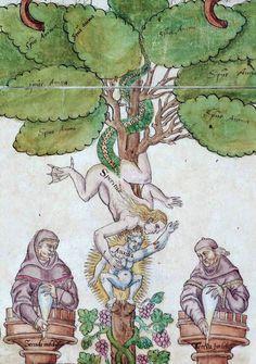 Ripley Scroll (c. Medieval World, Medieval Art, Renaissance Art, Tarot, Alchemy Art, Medieval Paintings, Esoteric Art, Dark Art Drawings, Medieval Manuscript