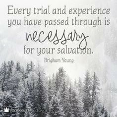 Going Through Trial and Trubulation KJV Bible site:pinterest.com | LDS quotes on trials on Pinterest | Trials Quotes, Faith and Doctrine ...