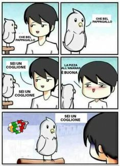 Oh Look A Parrot - Funny Memes. The Funniest Memes worldwide for Birthdays, School, Cats, and Dank Memes - Meme Memes Humor, Humor Videos, Stop Copying Me, Funny Shit, Funny Jokes, Funny Today, Super Funny Memes, Pewdiepie, Daily Memes