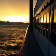 Every tour with Lake Mead Cruises offers passengers spectacular views of Lake Mead and the breathtaking scenery surrounding it. Boulder City Nv, Las Vegas Vacation, Lake Mead, Hoover Dam, Las Vegas Strip, Private Pool, Cruises, Bouldering, Vacations