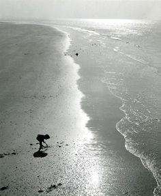 Seeking shells, 1955, Kees Scherer. Dutch (1920 - 1993)