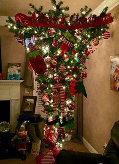 Upside down tree!!