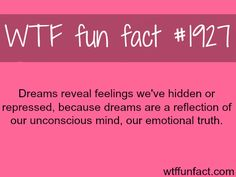 WTF Fun Fact Dreams reveal feelings we've hidden or repressed, because dreams are a reflection of our unconscious mind, our emotional truth. The More You Know, Good To Know, Did You Know, Just For You, True Facts, Funny Facts, Random Facts, Random Things, Random Stuff
