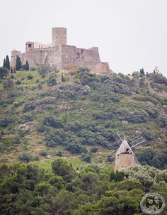 Castle Of Collioure - Pyrénées-Orientales