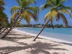 Vidéo des Antilles découverte des paysages paradisiaques de Martinique ( l'Ile aux fleurs ) - YouTube
